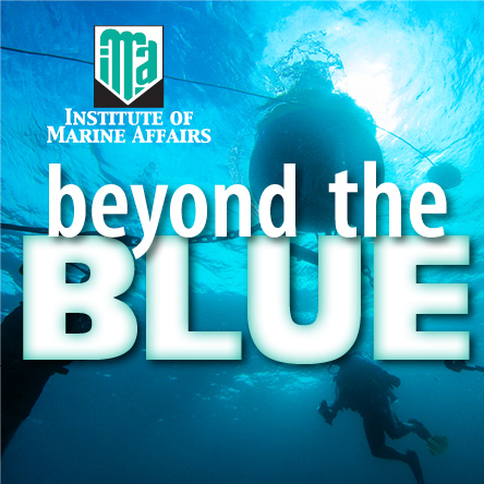 IMA's Beyond the Blue – ICZM Feature